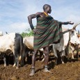 "Ugandan herders are well placed to adapt to global warming – but won't be represented at the conference in Durban. Meanwhile their government, backed by EU cash, wants to force <a href=""http://worldfamilyonline.org/uganda-nomads-face-an-attack-on-their-way-of-life/#more-'"" class=""more-link"">more »</a>"