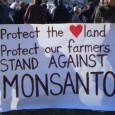 "Group brings challenge to patents on Monsanto's genetically engineered seed to Supreme Court - Andrea Germanos, staff writer Published on Friday, September 6, 2013 by Common Dreams A group of <a href=""http://worldfamilyonline.org/us-farmers-continue-david-vs-goliath-battle-against-monsanto/#more-'"" class=""more-link"">more »</a>"