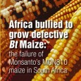 """Today the African Centre for Biosafety (ACB) released a new report 'Africa bullied to grow defective Bt Maize: the failure <a href=""""http://worldfamilyonline.org/monsanto-failed-sa-gm-maize-pushed-into-rest-of-africa/#more-'"""" class=""""more-link"""">more »</a>"""