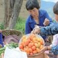"Lotto Zam, a Bhutanese woman farmer, sells tomatoes and other produce at a market in Shaba, Bhutan. By Doreen Fiedler Bhutan is renowned for espousing <a href=""http://worldfamilyonline.org/bhutan-looks-to-become-world%e2%80%99s-first-100-organic-country/#more-'"" class=""more-link"">more »</a>"