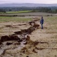 "By Roger Harrabin BBC environment analyst June 2nd 2016 Ministers are failing to protect Britain's soils on farmland and in cities, MPs say. The Commons Environmental Audit Committee warns that <a href=""http://worldfamilyonline.org/mps-sound-alarm-on-neglected-soils/#more-'"" class=""more-link"">more »</a>"