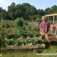 """Emma Goodwin Wednesday, 20th July 2016 Emma Goodwin describes how her family are fighting to keep their residency on a community based permaculture farm that builds deep, dark indestructible soil, <a href=""""http://worldfamilyonline.org/the-crossings-fight-for-regenerative-farming/#more-'"""" class=""""more-link"""">more »</a>"""
